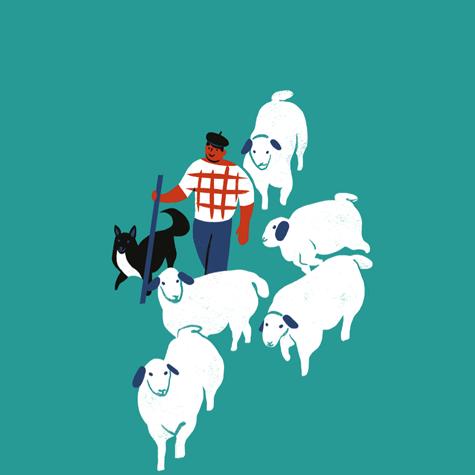 Roquefort, territoire en fêteévènement festival AOP